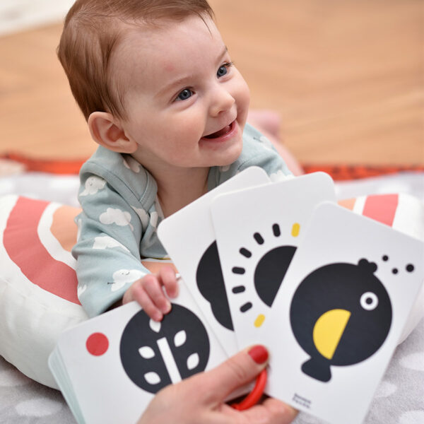 High Contrast Flash Cards on a ring 0m+ visual learning activity for infants