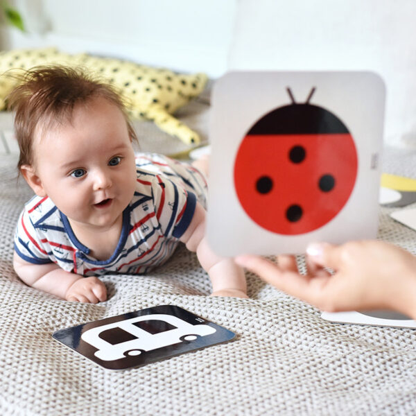 Double-sided contrast cards for newborns - The Way I See It Educational Flash Cards