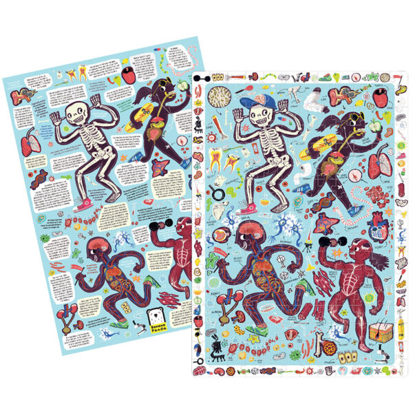 Jigsaw puzzle and educational poster about human body - Observation Puzzle My Body