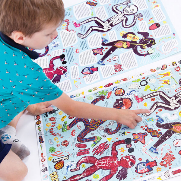 Observation Puzzle My Body - educational set puzzle and poster