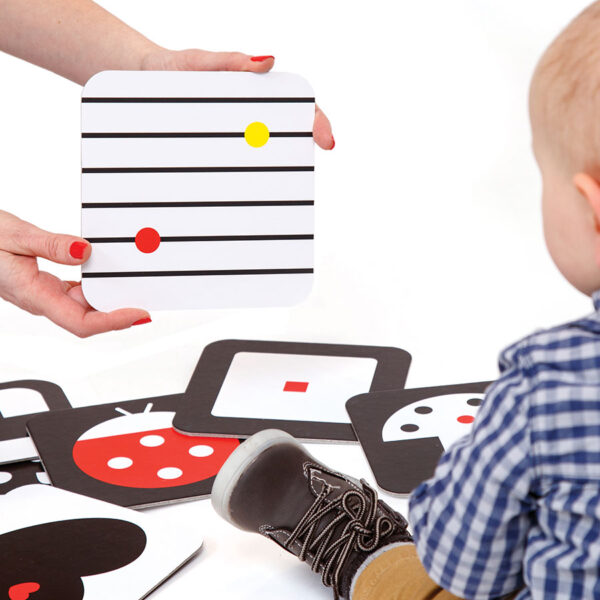 Flash cards for newborns - The Way I See It Educational Flash Cards