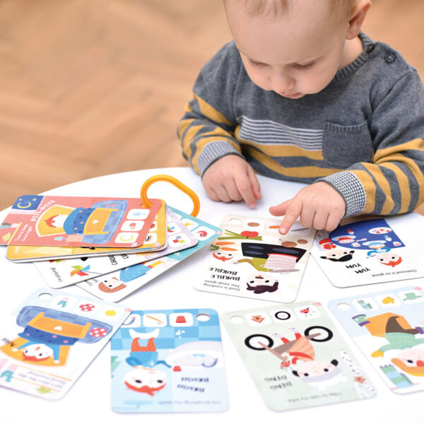 Take-a-look Picture Book My Day flash cards for toddlers
