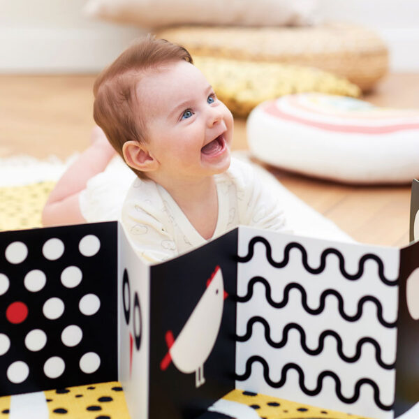 High Contrast Baby Pack contrast flash cards and books set
